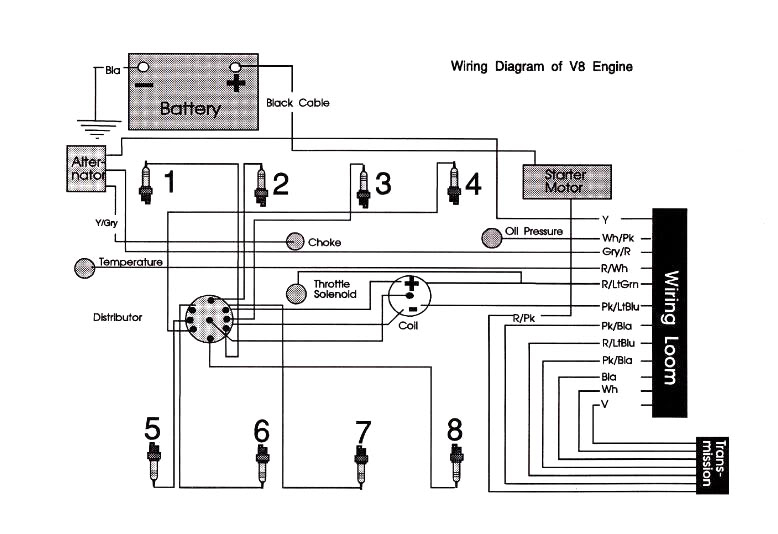 Xf Falcon Engine Wiring Diagram