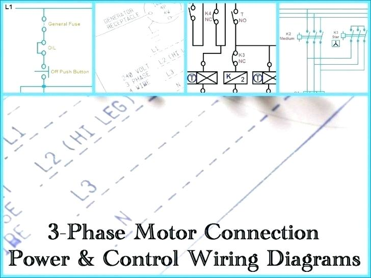 Tn 8038 With 2 Speed Motor Wiring Diagram On 3 Phase Plug Wiring Diagram Download Diagram