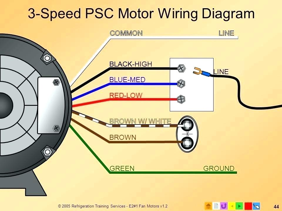 marathon electric 3 phase motor wiring diagram  best