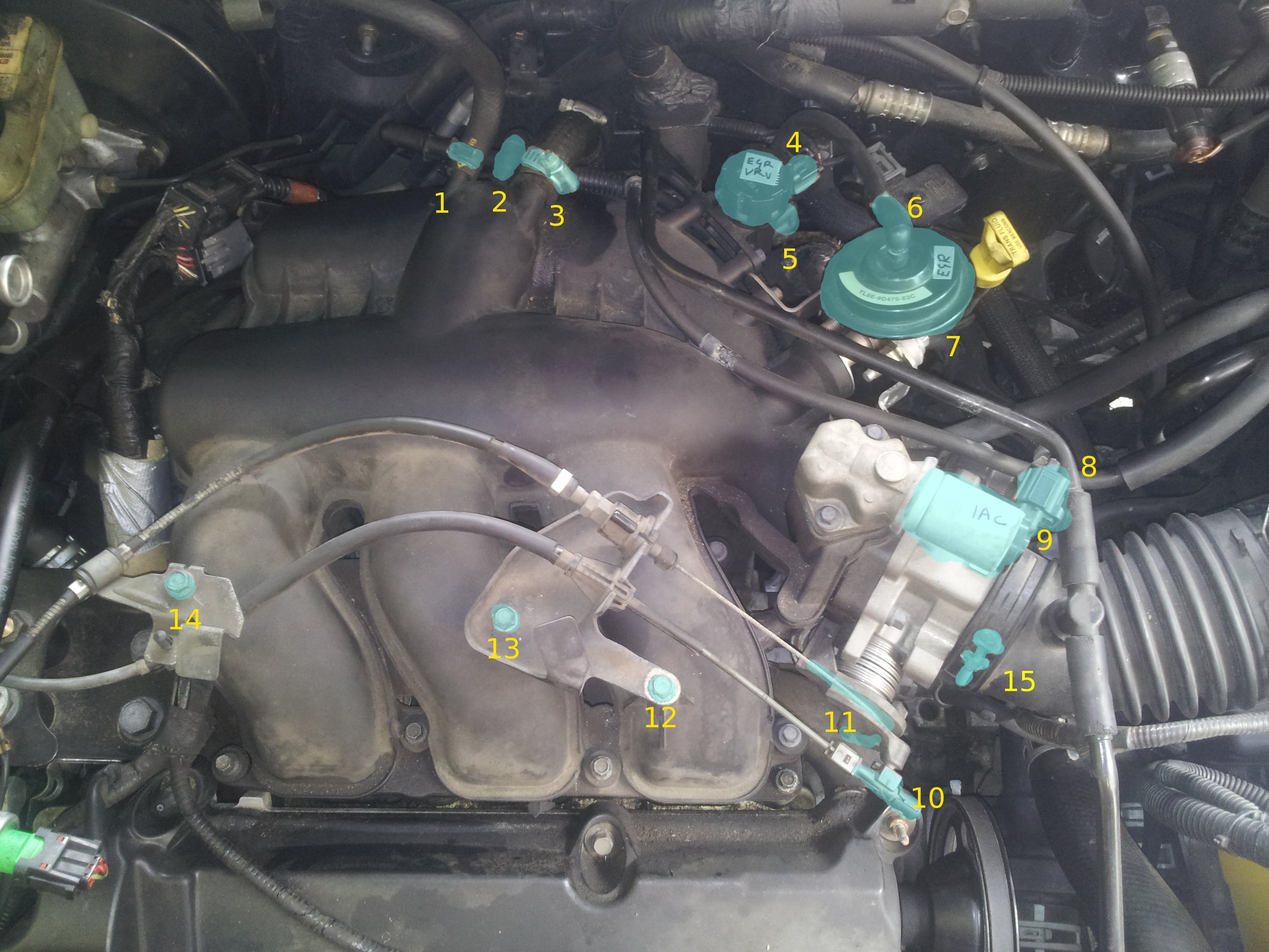 2002 Mazda Tribute Engine Diagram Ford Electronic Ignition Wiring Diagram Begeboy Wiring Diagram Source