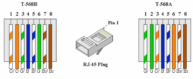 Fine Cat6A Wire Diagram Wiring Diagram Wiring Cloud Licukosporaidewilluminateatxorg