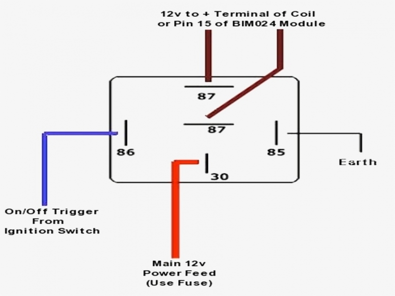 Diagram  Simple 5 Pin Relay Diagram Wiring Diagram Full Version Hd Quality Wiring Diagram