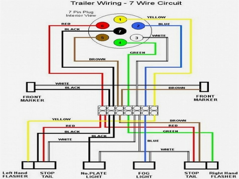 for 7 pin trailer connector wiring diagram for haulmark oe 1491  haulmark wiring diagram  oe 1491  haulmark wiring diagram